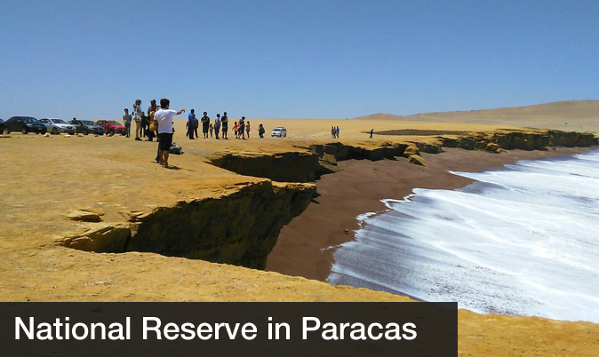 Day trips from lima - Paracas National Park